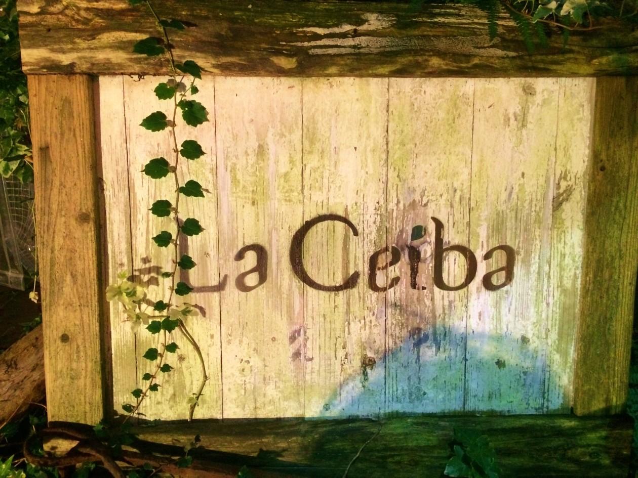 萩・La Ceiba